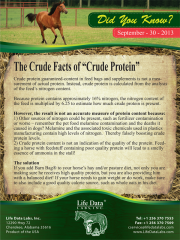 "THE CRUDE FACTS OF ""CRUDE PROTEIN"""